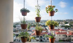 Potted Herb Garden Ideas 8 Space Saving Vertical Herb Garden Ideas For Small Yards Balconies