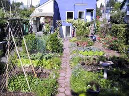 Backyard Composter New Stories From U0027urban Agriculture Notes U0027 U2014 City Farmer News