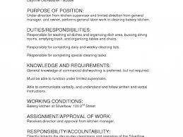 Dishwasher Job Description For Resume by Simple Server Job Description Resume Samplebusinessresume Com 100