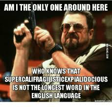 Meme In English - amithe only one around here who knows that
