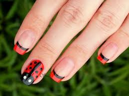 73 best everything ladybugs ladybirds images on pinterest