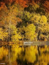 autumn color at radnor lake nashville tennessee usa stock photo