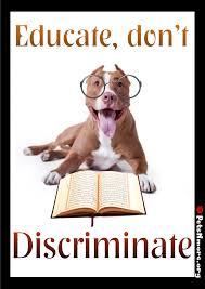american pitbull terrier qualities pets n more the truth about the american pit bull terrier