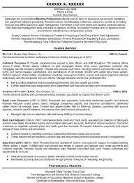 Resume Executive Summary Examples Jospar by Professional Curriculum Vitae Writing Service Jospar Writing