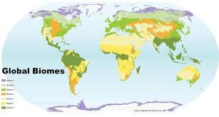 biomes map global biome map thinglink