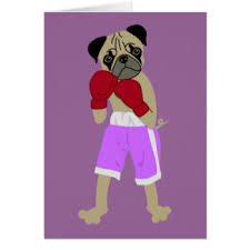 boxer dog in boxing gloves boxing gloves cards zazzle