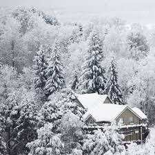 Winter Houses by Houses In Winter Forest Snow Around Stock Photo Picture And