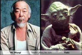 Mr Miyagi Meme - mr miyagi totally looks like yoda totally looks like