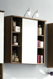 Ikea Bathroom Mirror Cabinet Skillful Bathroom Mirror Cabinets U2013 Elpro Me