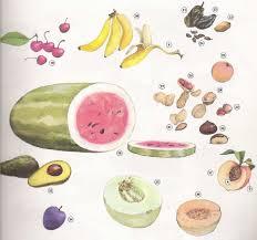 imagenes q inicien con la letra u vocabulario frutas y verduras en ingles fruit and vegetables