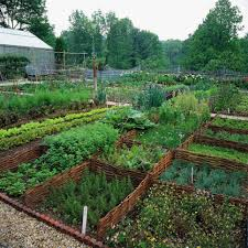 Edible Garden Ideas How To Design A Beautiful Edible Garden Hgtv