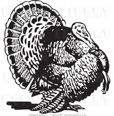 turkey black and white turkey black clipart kid cliparting