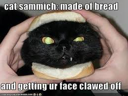 Cat In Bread Meme - i found the comment section lack a bread cat 116594302 added by