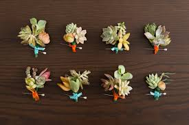 succulent boutonniere succulent boutonnieres for the wedding day