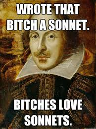 Bitches Love Meme - wrote that bitch a sonnet bitches love sonnets horny