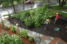 home veggie garden ideas edible gardening ideas 20 wonderful edible garden ideas digital