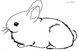 cute coloring pages for easter 22la3z3 free printable bunny coloring page cute pages to print