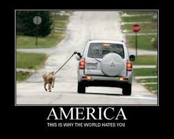 Meanwhile In America Meme - meanwhile in america humor funny things and laughter