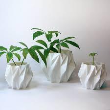 Indoor Planters Home Design 25 Best Ideas About Indoor Planters On Pinterest