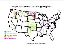 Where Is Winter Major Wheat Growing Regions In The Us Reference Maps The Fresh