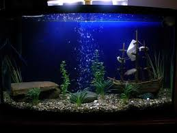how to build aquarium decoration themes cool aquarium