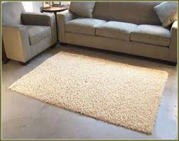 4 X 6 Area Rugs 4 X 6 Rugs Shaggy 4 6 Area Rug 4 6 Rugs Pinterest With