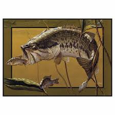 Fish Area Rug 151 Best Fishing Images On Pinterest Bass Fishing Fishing And