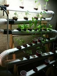 best 25 diy hydroponics ideas on pinterest hydroponics