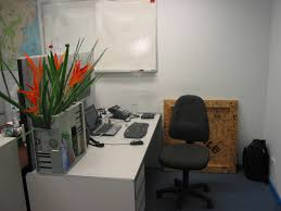 cubicle decor ideas for gaining your productivity designing city