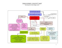 endocrine system concept map alterations of endocrine function