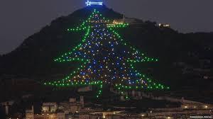 delightful world biggest christmas tree part 11 largest display