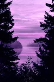 Purple Color Shades 101 Best Color Hue U003d Purple Violet Images On Pinterest Nature