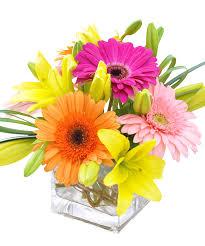 anchorage ak florist u0026 flower delivery bagoy u0027s florist