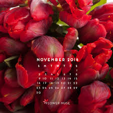 November Flowers November 2014 Calendar Flower Muse Blog