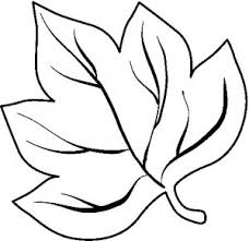 printable leaf coloring pages for kids fall leaves coloring page