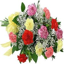 Free Shipping Flowers Send Flowers To Canada From India Online For Cheap Free Shipping
