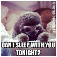 Sloth Meme Generator - sarcastic sloth via meme generator laugh out loud pinterest