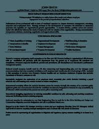 Best Resume Format Professional by Free Resume Templates Sample Professional It Samples Sales