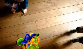 how to protect hardwood floors how to get rid of fleas on hardwood floors without compromising