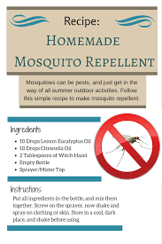 homemade natural mosquito repellent recipe zelfgemaakte