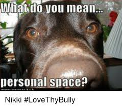 What Do You Mean By Meme - what do you mean personal space nikki lovethybully meme on
