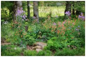 naturalized garden come with magical garden idea in he woodland