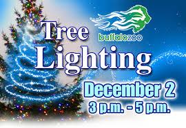 tree lighting buffalo zoo