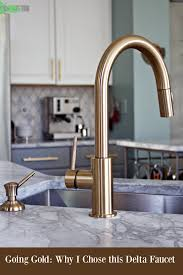 Delta Kitchen Faucet Delta Gold Trinsic Kitchen Faucet Chic And Super Functional In