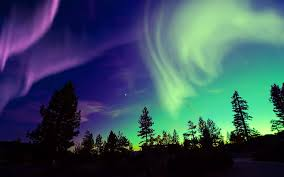 northern lights cruise 2018 cruises to alaska 2018 and 2019 alaska cruises the cruise web