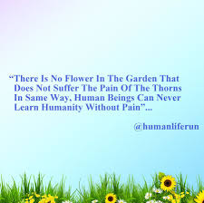 family garden quotes motivational quotes being human there is no flower
