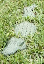 20 best gator stuff images on alligators 3 and