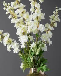 delphinium flowers delphinium flower stems balsam hill