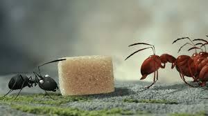 minuscule u2013 valley of the lost ants futurikon
