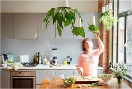 indoor kitchen garden ideas indoor herb garden ideas